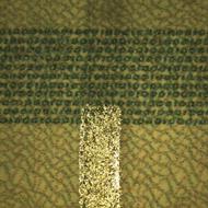 Деньги под микроскопом монеты 1850 года цена