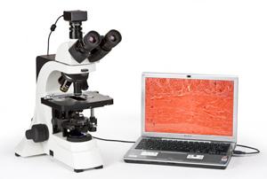 Картинки по запросу цифровые микроскопы